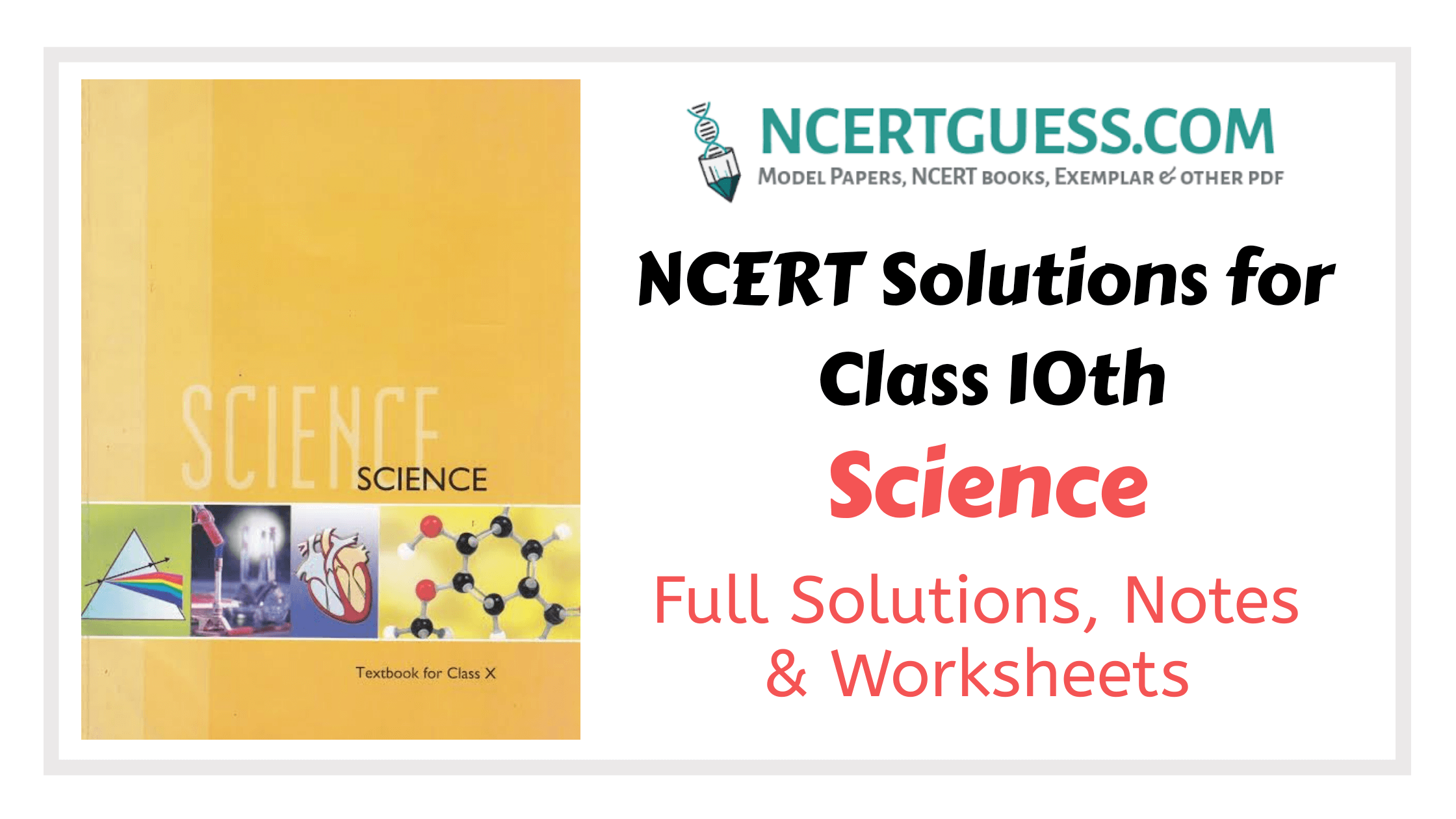 10th Science