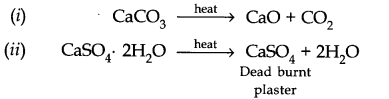 cbse-class-11th-chemistry-chapter-10-s-block-elements-9