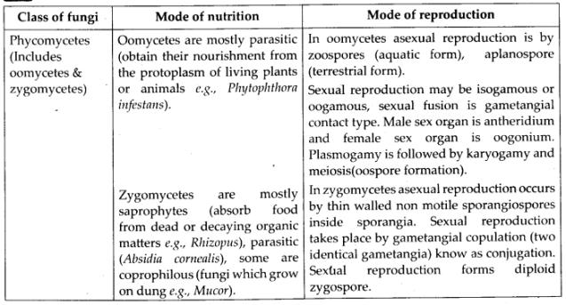 ncert-solutions-for-class-11-biology-biological-classificatin-1