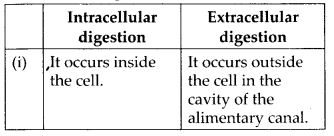 ncert-solutions-for-class-11-biology-animal-kingdom-1