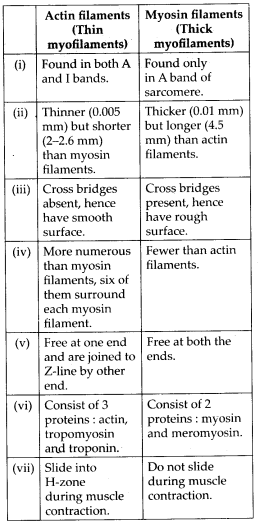 ncert-solutions-for-class-11-biology-locomotion-and-movement-3