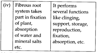 ncert-solutions-for-class-11-biology-morphology-of-flowering-plants-3