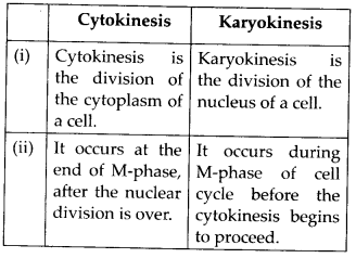 ncert-solutions-for-class-11-biology-cell-cycle-and-cell-division-1
