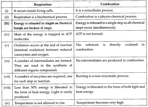 ncert-solutions-for-class-11-biology-respiration-in-plants-2-2