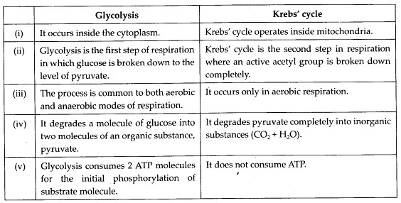 ncert-solutions-for-class-11-biology-respiration-in-plants-2-3