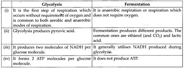 ncert-solutions-for-class-11-biology-respiration-in-plants-2-8