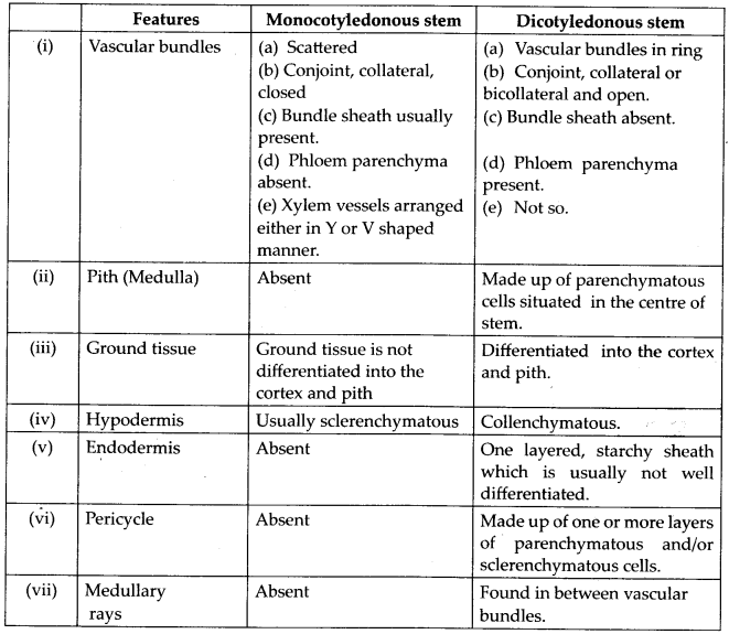 ncert-solutions-for-class-11-biology-anatomy-of-flowering-plants-5