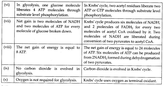 ncert-solutions-for-class-11-biology-respiration-in-plants-2-4