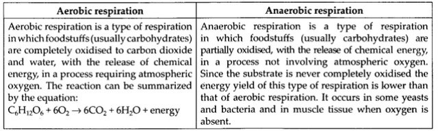 ncert-solutions-for-class-11-biology-respiration-in-plants-2-7