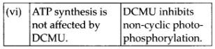 ncert-solutions-for-class-11-biology-photosynthesis-in-higher-plants-4