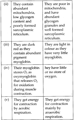 ncert-solutions-for-class-11-biology-locomotion-and-movement-5