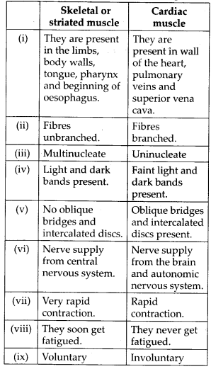ncert-solutions-for-class-11-biology-locomotion-and-movement-8