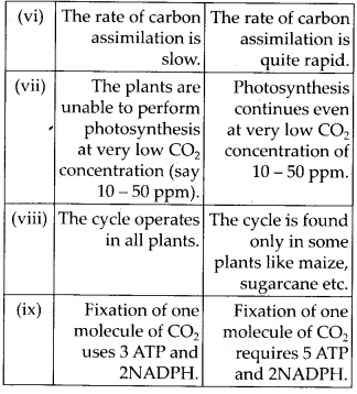 ncert-solutions-for-class-11-biology-photosynthesis-in-higher-plants-2