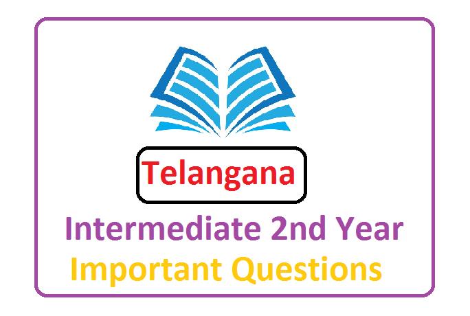 Telangana Sr Inter Important Question 2020, Telangana Inter 2nd Year Model Paper 2020